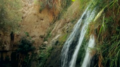 Ein Gedi Nature Reserve. israel. The Dead Sea Stock Footage