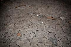 Stock Photo of cracked and barren ground