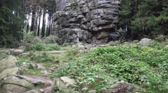 4k Big rocks monument landscape tilt in low mountain range Harz Stock Footage