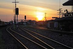 railway tracks at train station during sunset - stock photo