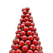 Christmas ornaments peak red Stock Illustration