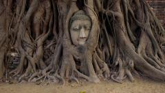 Head of Buddha Statue in the Tree Roots at Wat Mahathat, Ayutthaya, Thailand Stock Footage