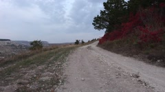 Countryside road in the mountain forest Stock Footage