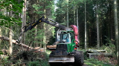 Working with Heavy forestry machinery Stock Footage