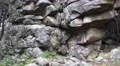 4k Big rocks monument closeup tilt up in low mountain range Harz 4k or 4k+ Resolution