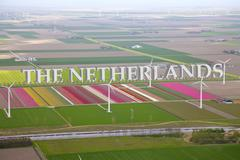 Dutch colourful flower field from above with netherlands 3d text Stock Photos