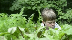 Young boy picks beets in garden Stock Footage