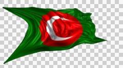 Flag of Kurdistan Stock Footage
