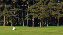 Father and son playing in Kamenicki park Stock Footage