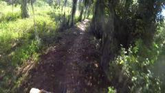 POV mountain bike riding through Florida cypress trees Stock Footage