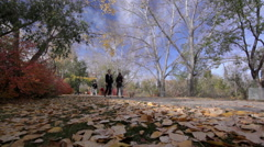 Fall Colours at Eau Claire, Calgary Stock Footage