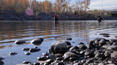 Fly Fisherman on Bow River - stock footage