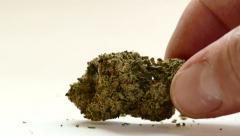 Medical Marijuana Bud - 4K Stock Footage