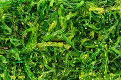 kelp salad background image - stock photo