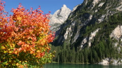 4k UHD autumn at lake prags in dolomites alps 11517 Stock Footage