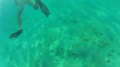 Snorkler kicks through water Stock Footage