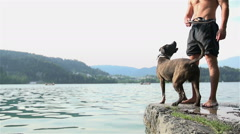 Dog jumping in to lake after slipper slow motion Stock Footage