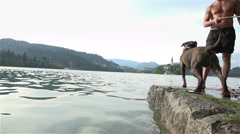 SLOW MOV: Dog fetch wooden stick in to water Stock Footage