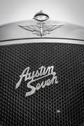 Austin seven fly catcher Stock Photos