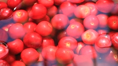 Red cherry in water Stock Footage