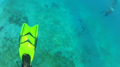 Snorkelers at Play Stock Footage
