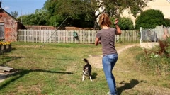 Girl Plays with Dog Stock Footage