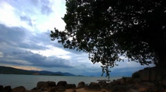 Tropical beach under gloomy sky with alone tree. Koh Samui, Thailand. HD. Stock Footage