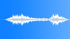 Stock Music of Seagulls (15s edit)
