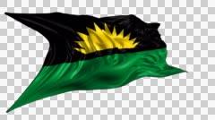 Republic of Benin Flag Stock Footage