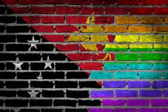 Dark brick wall - lgbt rights - papua new guinea Stock Illustration