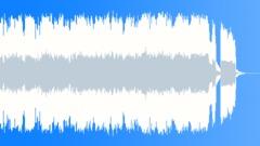 Holy Roller (30s edit ALT) - stock music
