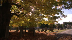 New england cemetery in fall color Stock Footage