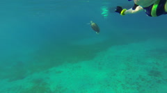 Snorkler trailing turtle Stock Footage