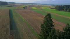 4K Aerial: Reveal Cornfield in Autumn - stock footage