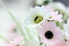 focus colorful of artificial flowers. - stock photo
