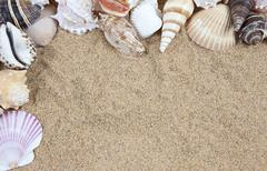 Nice sea shells on the sandy beach taken closeup, shell border or frame Stock Photos