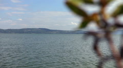 Lake view with foreground blurred plant element Stock Footage