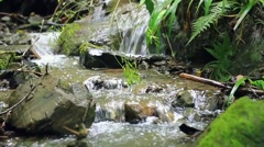 Water stream at mount Takao, Tokyo, Japan Stock Footage