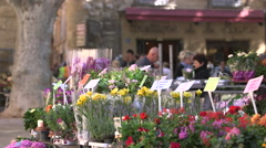FLOWER MARKET, AIX EN PROVENCE, FRANCE Stock Footage