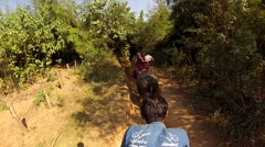 Riding on an elephant - stock footage