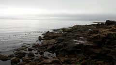Whitley Bay.  Low tide Stock Footage