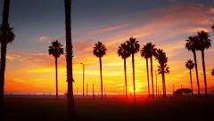 Palm trees at sunset on ocean beach Santa Monica California Timelapse hyperlapse Stock Footage