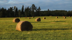 Haybales at sunset in a field in Ontario, Canada. - stock footage