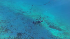 A boat captian helps divers find turtles Stock Footage