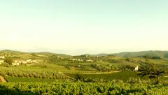 Scenic Agriculture Vineyard Landscape Tuscany Nature Italy Beauty Stock Footage
