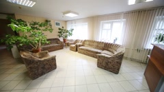 Empty light hall with plants growing in pots, sofa and armchair Stock Footage