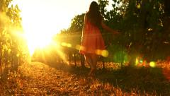 Pretty Young Female Walking Through Vineyard at Sunset Tuscany Harvest Stock Footage