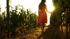Pretty Woman Walking through Vineyard Grape Harvest Concept - stock footage