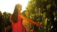 Beautiful Vineyard Sunset Woman Caressing Grape Vine Wine Agriculture Fertility Stock Footage
