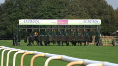 Horse Racing panning start scene racing horses passing by Stock Footage